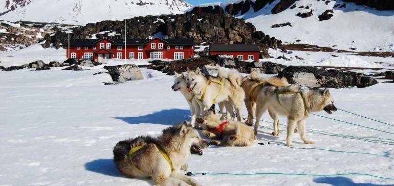 Nové pozice: Animátor volného času v Grónsku!